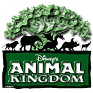 Disney price change